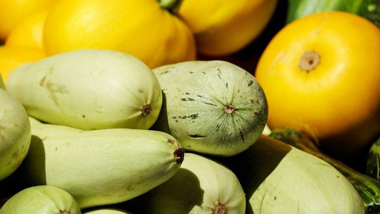 Na čo treba myslieť pri zbere zeleniny a ovocia