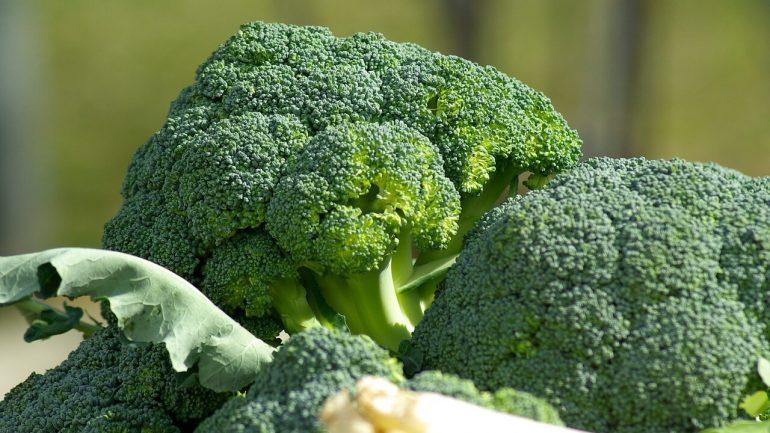 Účinky brokolice na naše zdravie