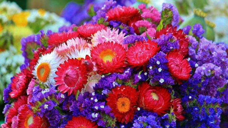 Sušené kvety sú krásnou dekoráciou