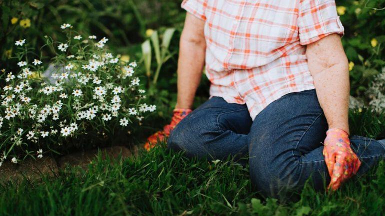 5 spôsobov, ako môže záhradka pomôcť v boji s demenciou