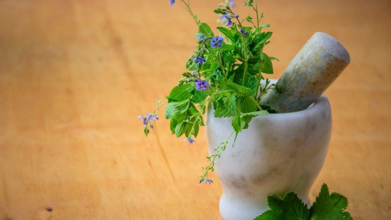 6 dôvodov, prečo vaše bylinky v záhrade umierajú