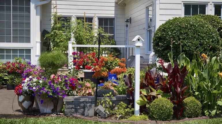 4 tipy, aby vaša záhrada v máji krásne zakvitla