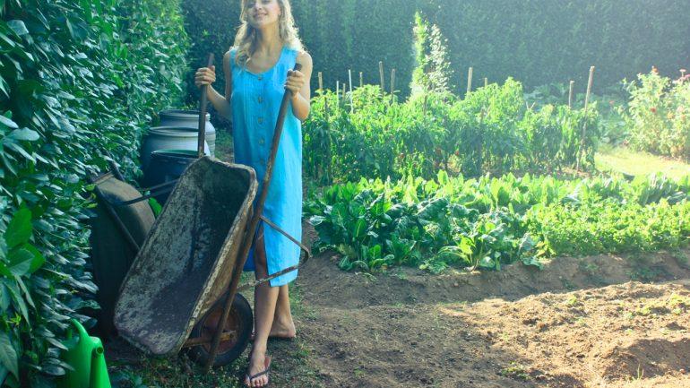 Jednoduchá záhrada znamená uprataná záhrada