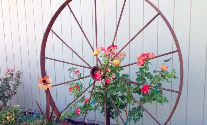 Úžasné inšpirácie na recykláciu starých vecí vo vašej záhrade