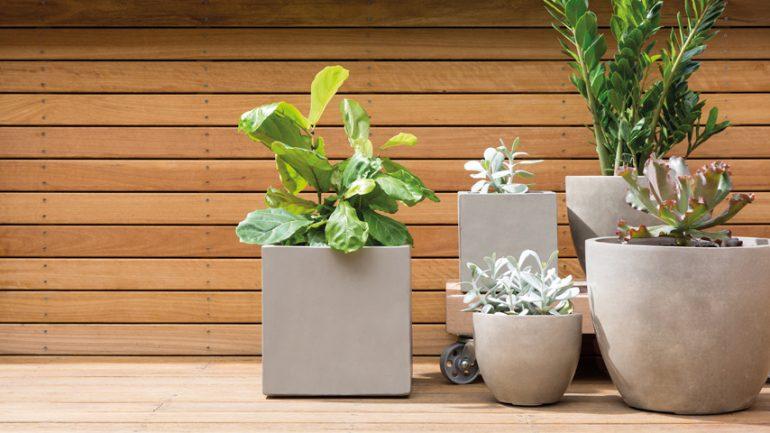 Betónový kvetináč: Nebojte sa, aj on vie skrášliť záhradu