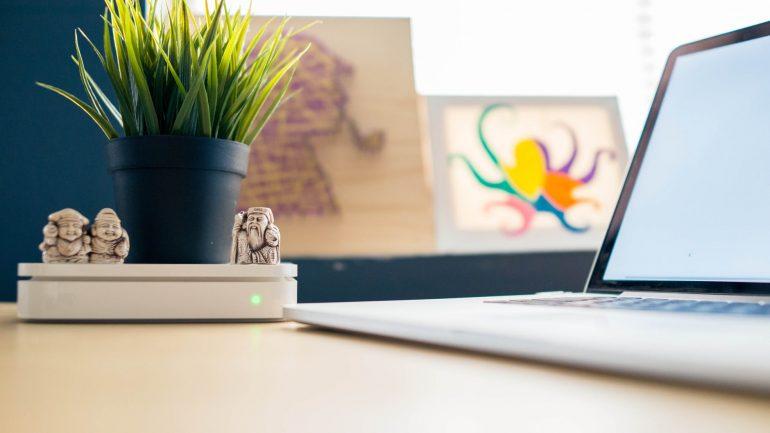 9 spôsobov, ako udržať izbové rastliny šťastné