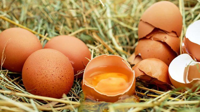 Čo sa deje s vašim telom, ak budete konzumovať dve vajcia denne?