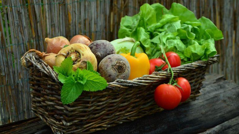Čo je potrebné spraviť v zeleninovej záhrade v máji?