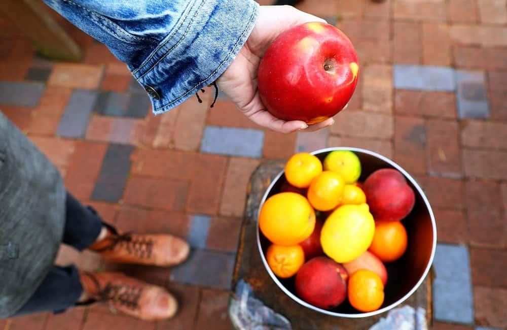 jablko, úroda