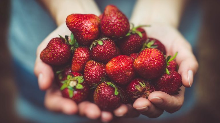Chcete vlastné jahody? Najlepšie tipy pre ich pestovanie