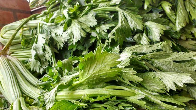 Ako sušiť zelenú zelerovú vňať