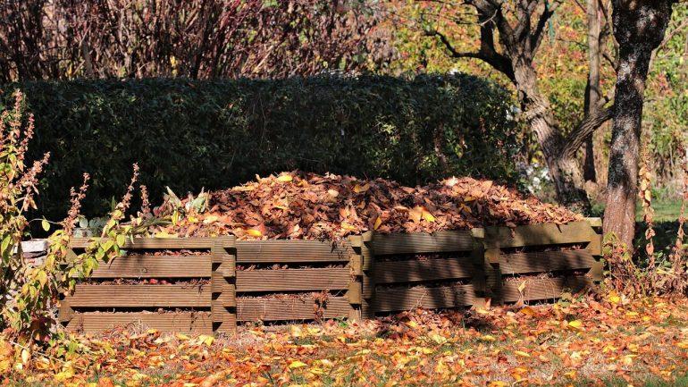 Jesenné upratovanie: Čo všetko môže ísť do kompostu?
