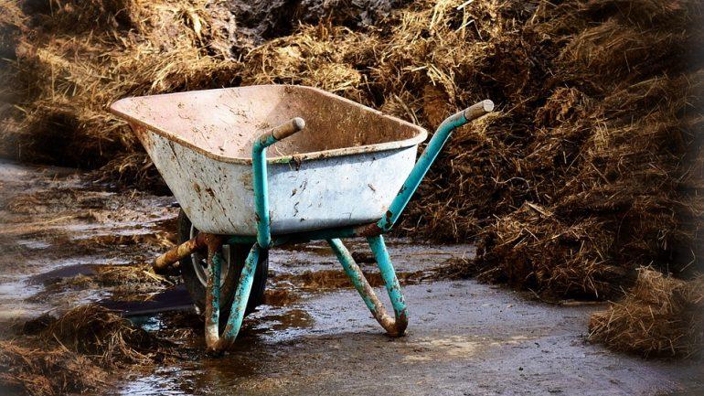 Ako vybrať správne hnojivo na jeseň?
