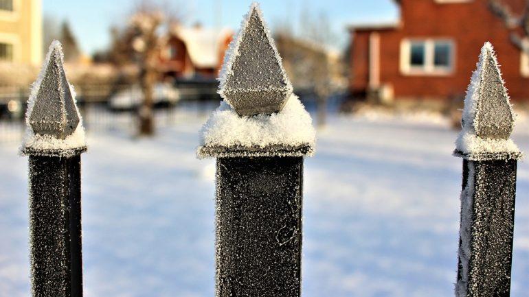 Ako ochrániť svoju záhradu pred nástrahami zimy?