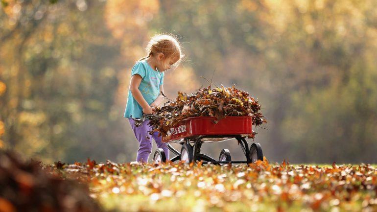 Nový trend – nehrabať lístie zo záhrady. Aké sú výhody a nevýhody?