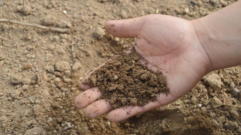rozdiel medzi pôdou a substrátom
