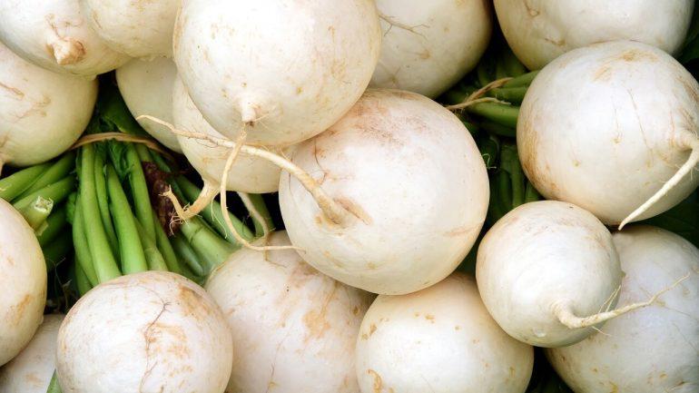 ako pestovať bielu reďkovku