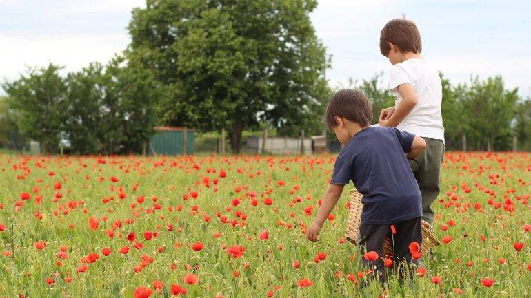 Škola vo vašej záhrade: Ako vyučovať deti doma?