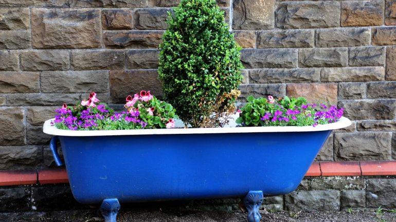 6 nápadov, ako kreatívne vytvoriť záhradu zeleniny, II. časť