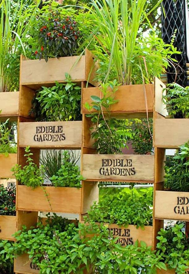 záhrada z debničiek