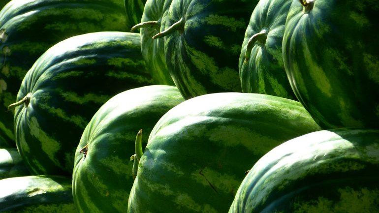 melónový olej