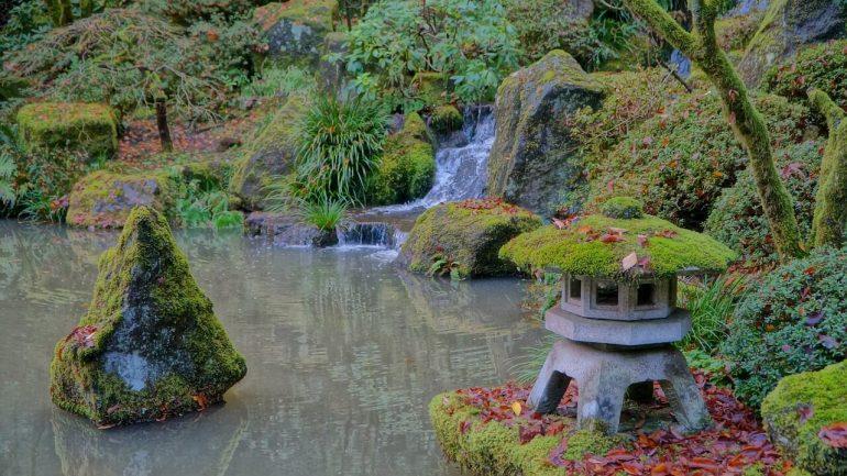 Rybník s vodopádom: 6 užitočných rád, ako si ho vytvoriť, časť I.