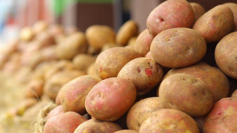 Správne skladovanie úrody: Takto vydrží dlhšie svieža