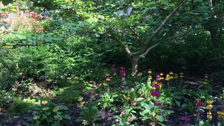 kvetinové záhrady