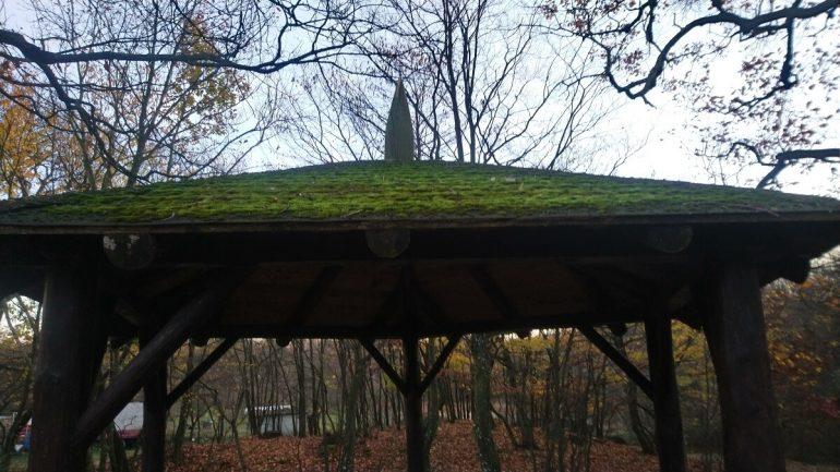 Ako odstrániť mach zo strechy?