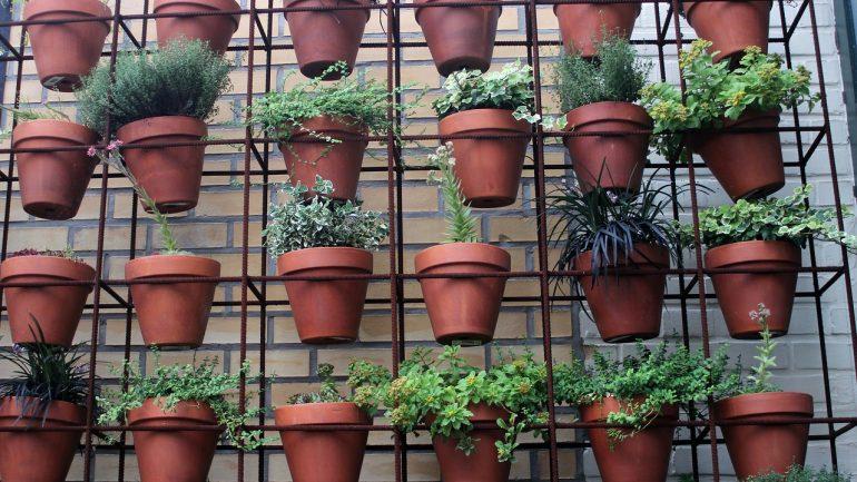 Alternatívne záhradnícke metódy pre seniorov