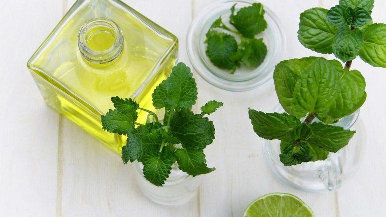 Ktoré vône z vašej záhrady liečia? Časť II.