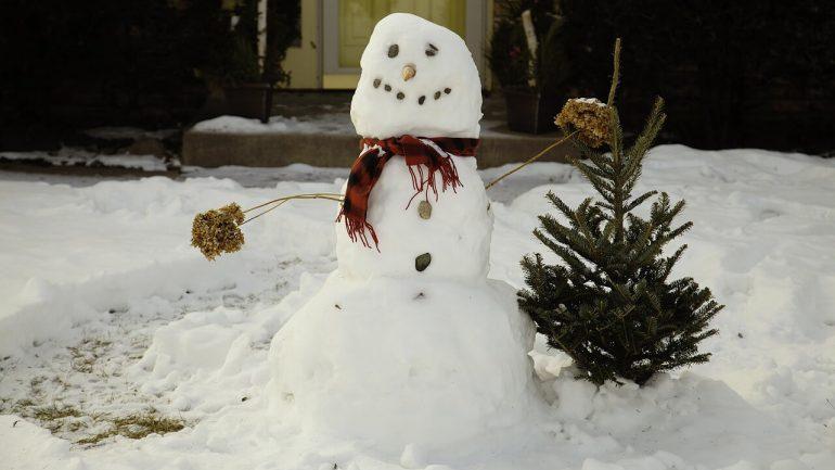 akého snehuliaka postaviť na vašej záhrade