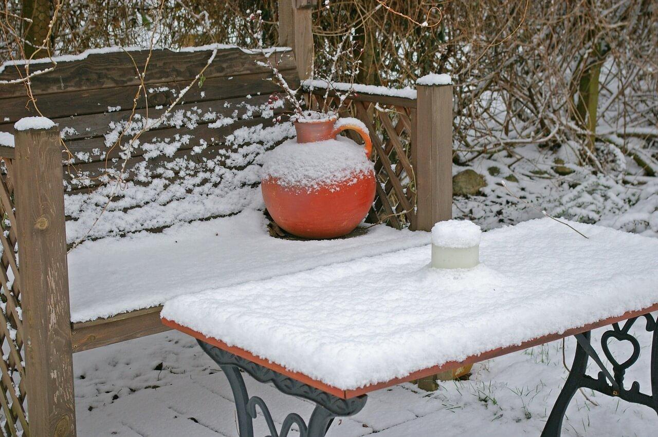 čo sa robí v januári na záhrade