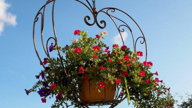 Vytvorte si voňavý balkón v malom priestore