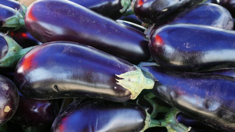 Výsadba a pestovanie baklažánu: Ako mať krásnu úrodu?