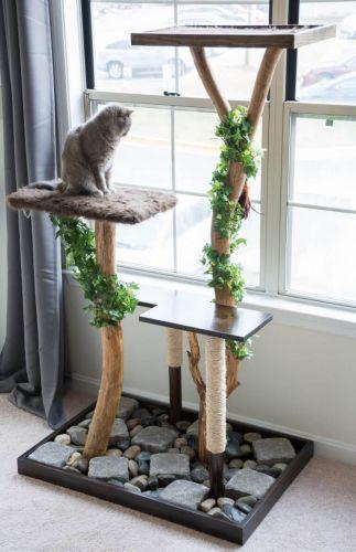 Raj pre vašu mačku