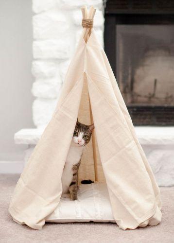 Stan pre mačky
