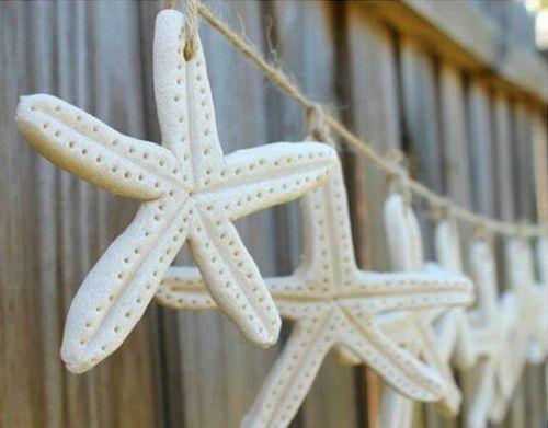 Morské hviezdy