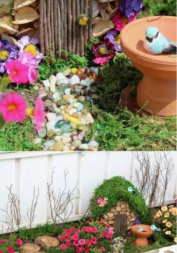 Zakvitnutá záhradka
