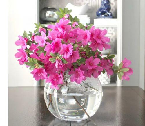 Ako váza poslúži aj staré akvárium