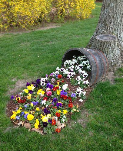 Farebná zmes kvetov