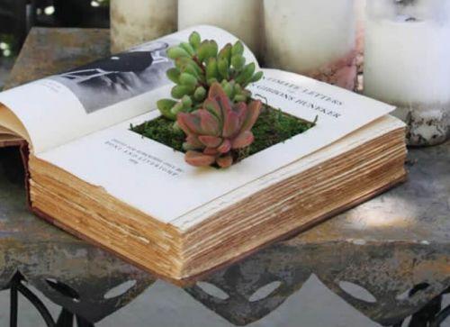 Kvetináč z knihy