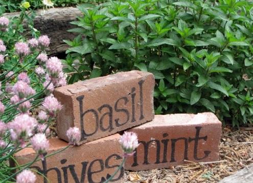 Nápad ako  označiť zasadené bylinky