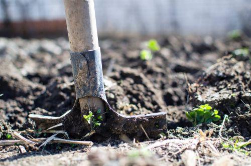 Práca v zeleninovej záhrade