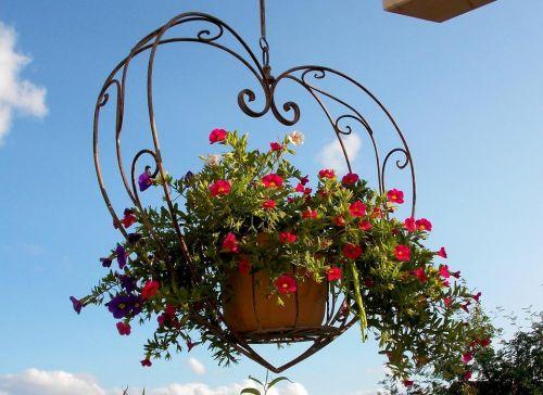 Závesné koše na kvety